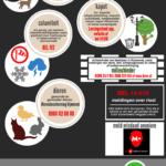 Infographic BTL Lansingerland